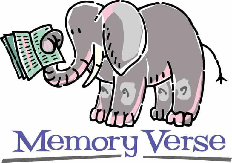 Is Memorization Still Important?